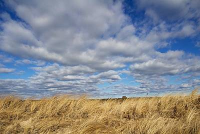 Dune Grass And Sky Art Print by Allan Morrison