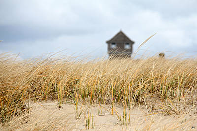 Photograph - Dune Grass by John Meader