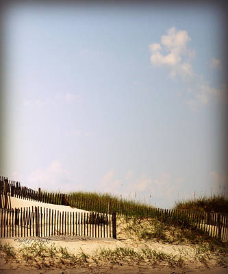 Photograph - Dune Grasses by Paulette B Wright
