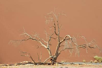 Dune In Namib-naukluft National Park Art Print