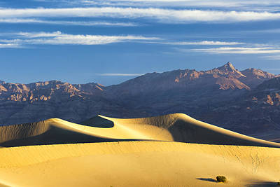 Art Print featuring the photograph Dune Light by Patrick Downey