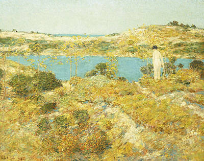 Outdoor Nude Painting - Dune Pool by Childe Hassam
