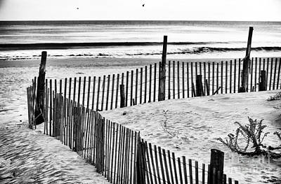 Sand Fences Photograph - Dune Protection by John Rizzuto