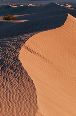 Photograph - Dune Ridge At Sunrise by Michael Blanchette