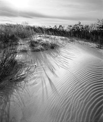 Dune Ripple Art Print by James Rasmusson