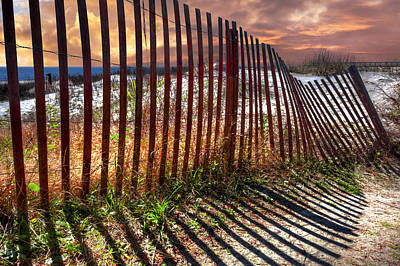 Driftwood Beach Fog Wall Art - Photograph - Dune Shadows by Debra and Dave Vanderlaan