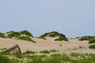 Seaside Photograph - Dunes And Grasses 7 by Cathy Lindsey