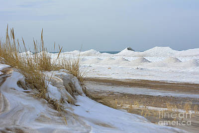 Indiana Dunes Photograph - Dunes And Shelf Ice by Forest Floor Photography