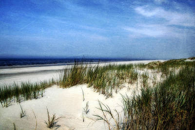 Photograph - Dunes  by Annie Snel