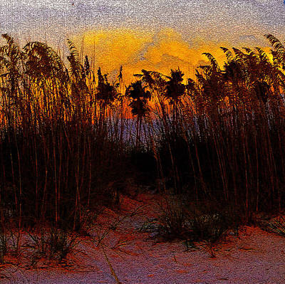 Photograph - Dunes At Dusk Antique Style A by David Lee Thompson