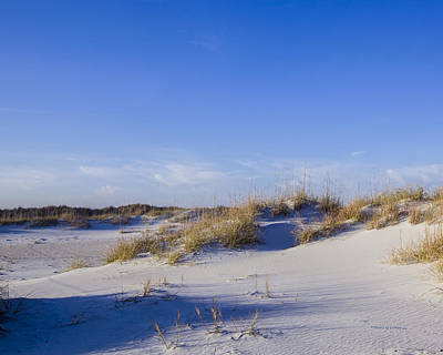 Photograph - Dunes by Denis Lemay