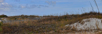 Photograph - Dunes Fenceline - Wrightsville Beach by Paulette B Wright