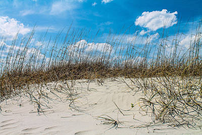 Photograph - Dunes by Jessica Brown