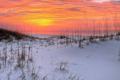 Photograph - Dunes Of Orange Beach by JC Findley
