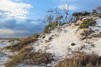 Dunes Of Santa Rosa Island Art Print by JC Findley
