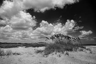 Photograph - Dunes by Rudy Umans