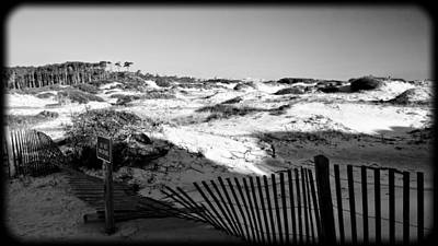 Photograph - Dunes Scape 2 by George Taylor