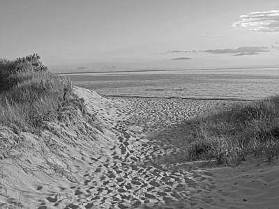 Dunes Walk Art Print by Barbara McDevitt