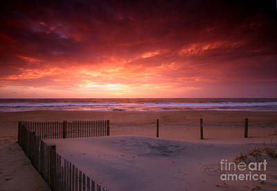 Photograph - Dunescape by Butch Lombardi