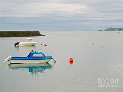 Photograph - Dungarvan Bay by Suzanne Oesterling