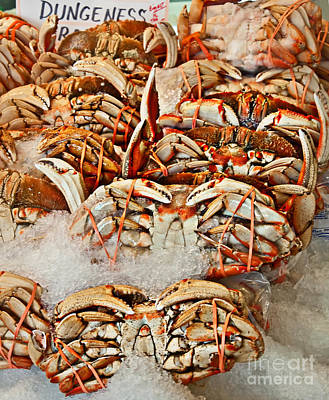 Photograph - Dungeness Crab On Ice  by Valerie Garner