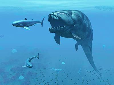 Dunkleosteus Hunting Primitive Sharks Photograph by Walter Myers