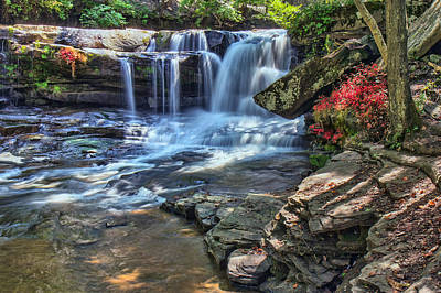 Photograph - Dunloup Creek Falls by Mary Almond