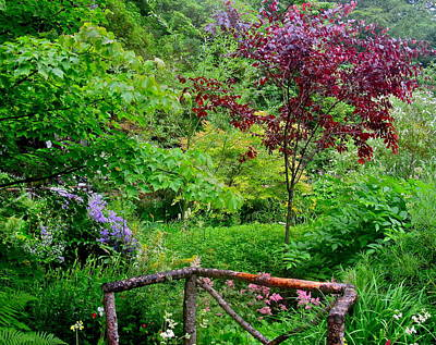 Photograph - Dunvegan Garden by Denise Mazzocco