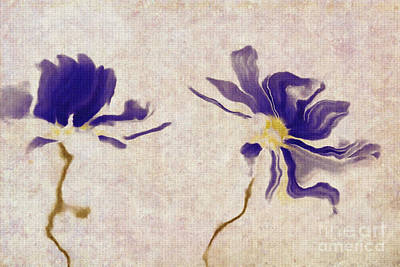 Purple Flowers Digital Art - Duo Daisies - A01v03t01b by Variance Collections