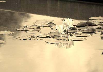 Duo Magic Reflection Art Print by Sonali Gangane