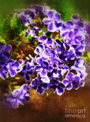 Photograph - Durantas- Vintage Blooms by Darla Wood