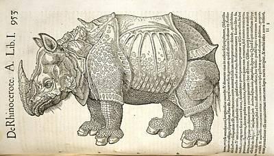 Durer's Rhinoceros, 16th Century Art Print by Natural History Museum, London