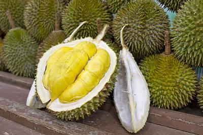 Durian 2 Art Print