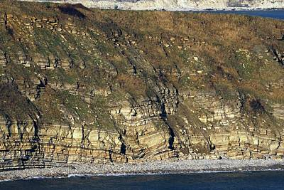 Durlston Cliff Art Print by Colin Varndell