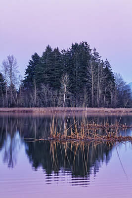 Photograph - Dusk At Fern Ridge by Belinda Greb