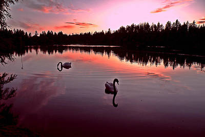 Photograph - Dusk At Lost Lagoon by Brian Chase