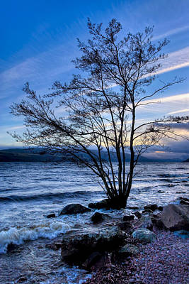 Photograph - Dusk On The Shores Of Loch Ness by Mark E Tisdale