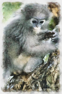 Painting - Dusky Langur At Ao Manao Beach by Nola Lee Kelsey