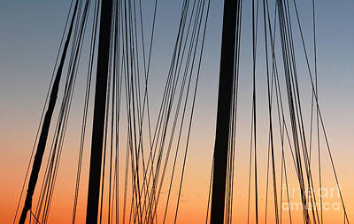 Art Print featuring the photograph Dusky Ropes by Sebastian Mathews Szewczyk