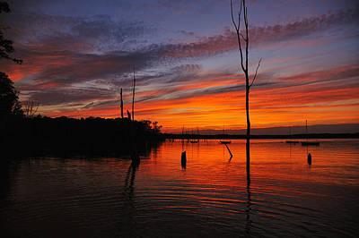 Digital Art - Dusky Sunset by Angel Cher