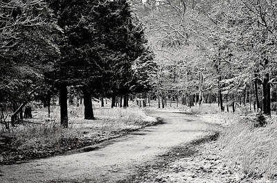 Dusted Path - Black And White Art Print