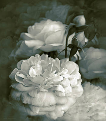 Photograph - Dusty Green Roses Bouquet  by Jennie Marie Schell
