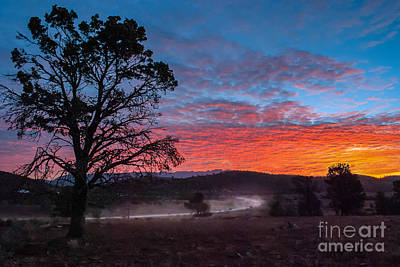 Photograph - Dusty Outback Sunset by Ray Warren