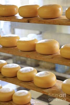 Cookbooks Photograph - Dutch Cheese by Carol Groenen