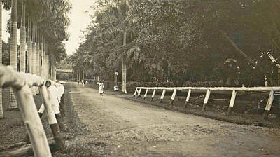Dutch East Indies, Indonesia, Driveway Helvetia Deli Mij Print by Artokoloro