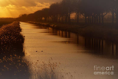 Photograph - Dutch Landscape by Nick  Biemans