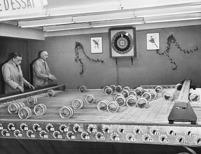 Belgium Photograph - Dwarf Parrot Gambling Races by Underwood Archives