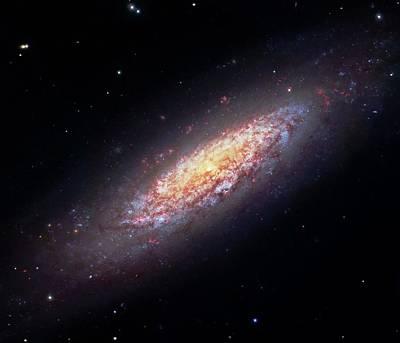 Spiral Photograph - Dwarf Spiral Galaxy Ngc 6503 by Robert Gendler