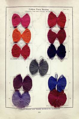 Dyed Cotton Yarn Samples Art Print by Science, Industry And Business Library: General Collection/new York Public Library