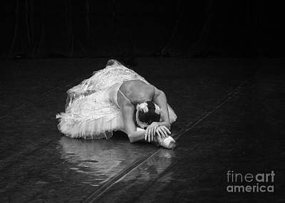 Photograph - Dying Swan 4. by Clare Bambers
